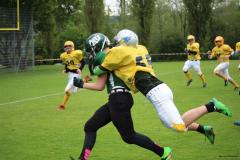 2016.05.14 U19 Heimspiel vs. Fribourg Cardinals