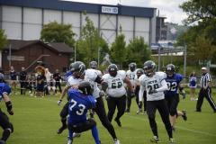 2014.05.17 Aktive Ausswärts vs. Luzern Lions